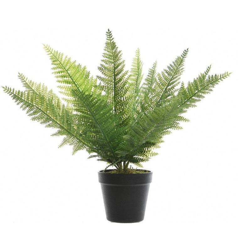 Groene adelaarsvaren kunstplant 48 cm in zwarte pot -