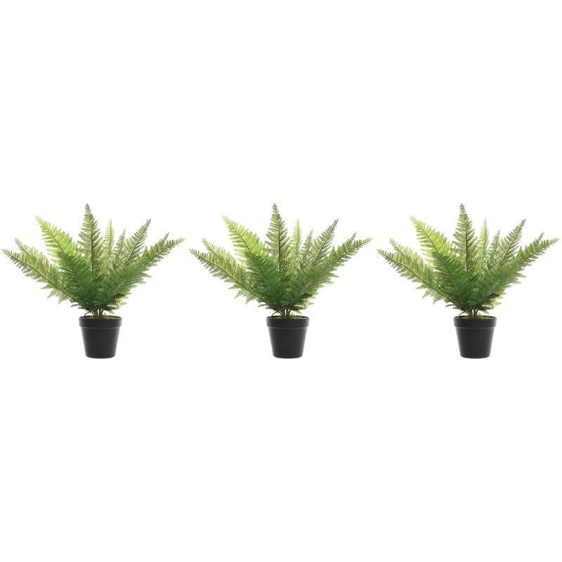 3x Groene adelaarsvaren kunstplanten 48 cm in zwarte pot -