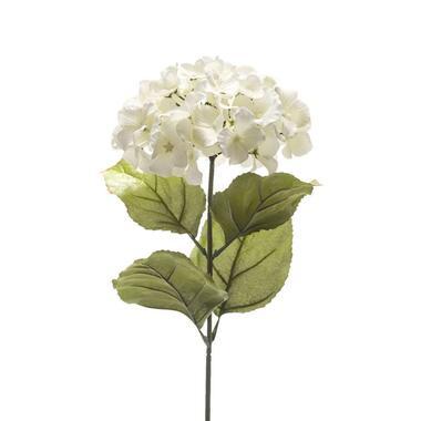 Kunstbloem Hortensia - wit - 65 cm - Leen Bakker
