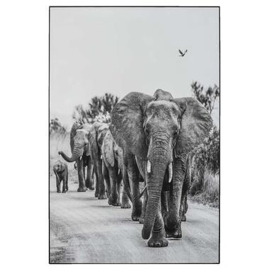 Schilderij Olifanten - zwart/wit - 90x60 cm - Leen Bakker