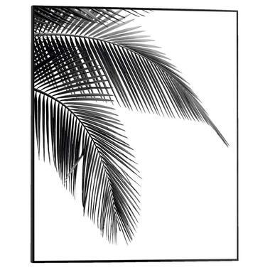 Poster met lijst Palmboomblad - 50x40 cm - Leen Bakker