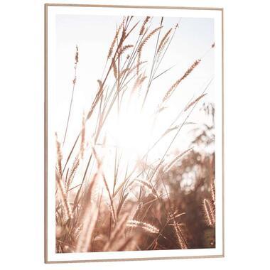 Poster met lijst Zonnig Gras - 70x50 cm - Leen Bakker