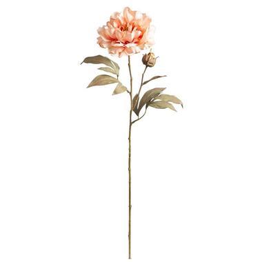Peony Spray - roze - 65 cm - Leen Bakker