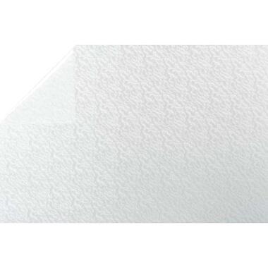 Bestfix plakfolie Ice Flower - transparant - 45 cm - Leen Bakker
